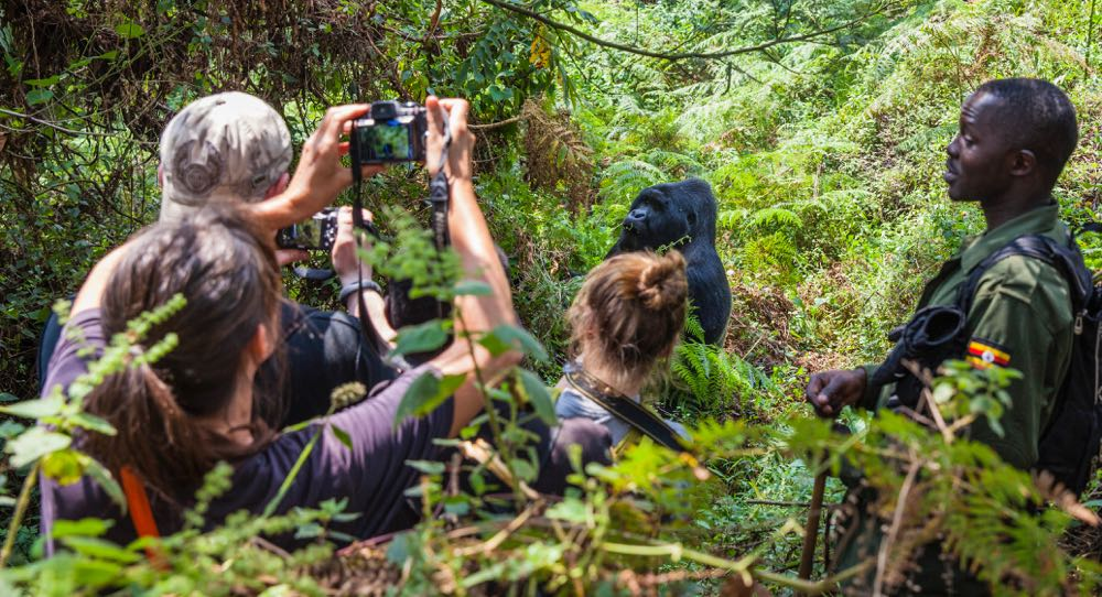 Gorilla trackers in Mgahinga Gorilla National Park; photo by Marcus Westberg