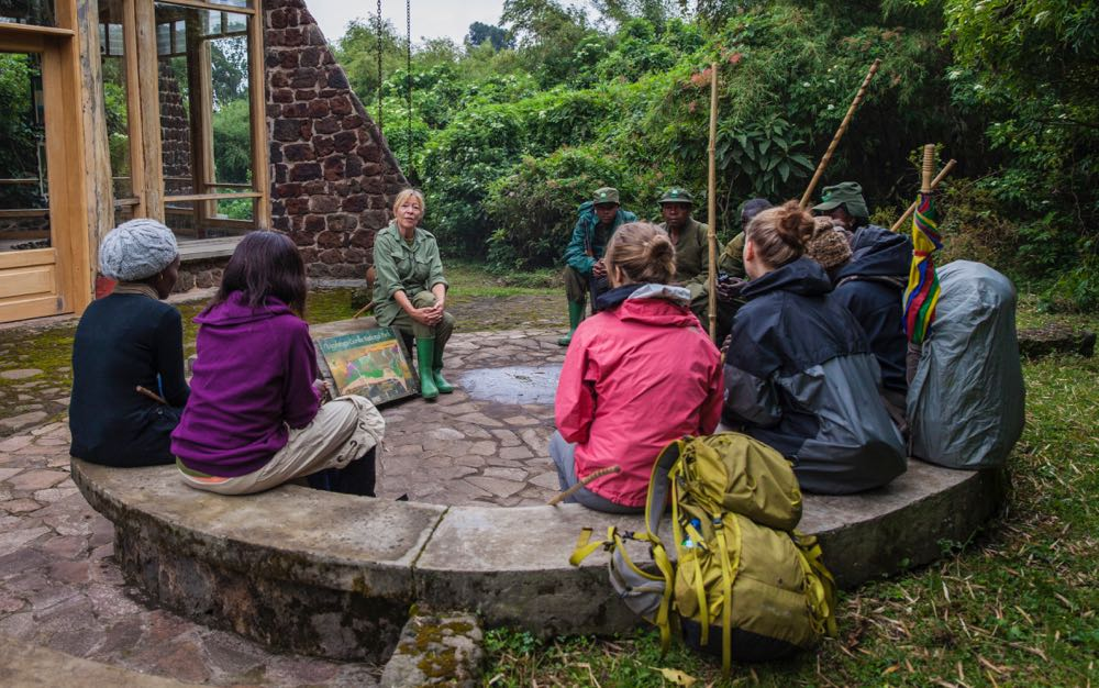 Introduction to golden monkey tracking by Sandra Gray; photo by Marcus Westberg
