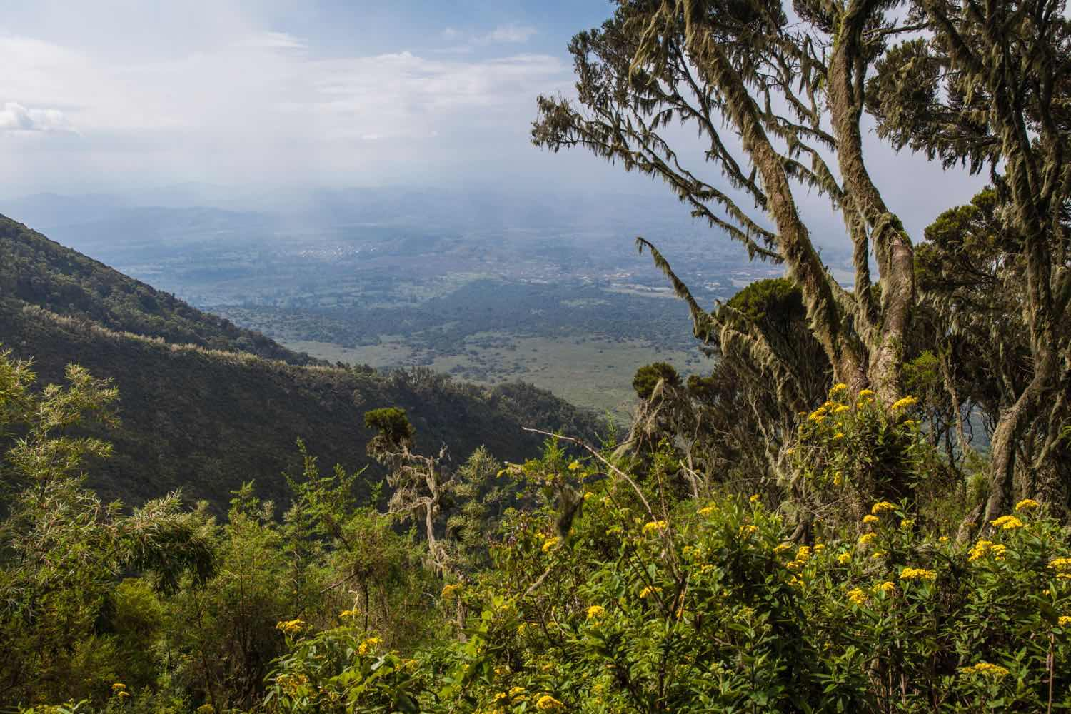View from Muhavura by Marcus Westberg