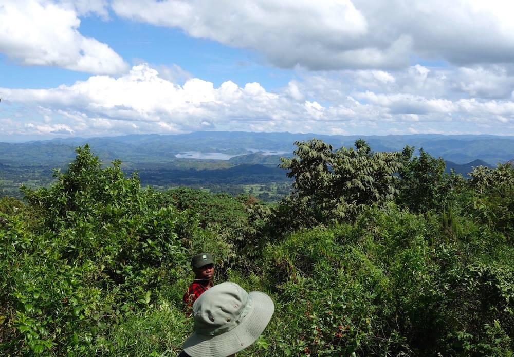 Lake Mutanda visible during gorilla tracking