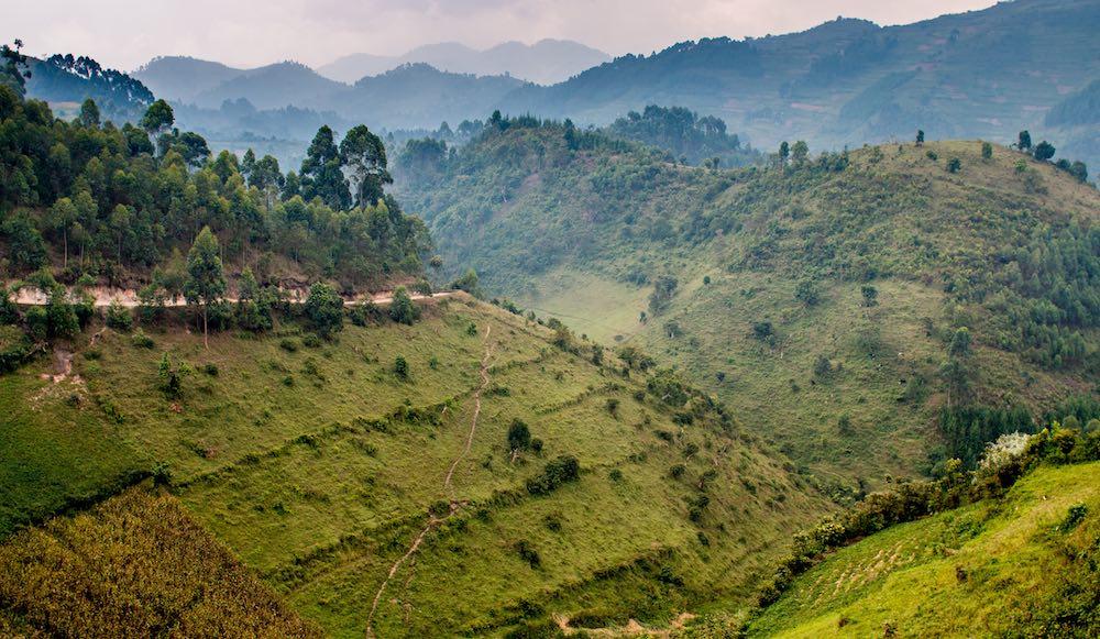 Gorilla Highlands landscape; photo by Stefano Barazzetta