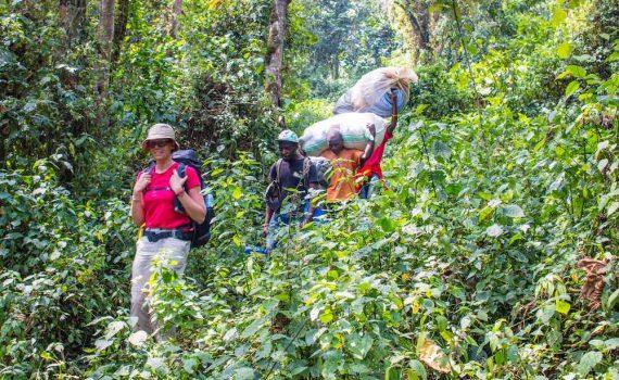 Through Echuya Forest; photo by Stefano Barazzetta