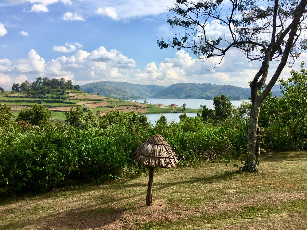 View from Bushara Island; photo by Miha Logar