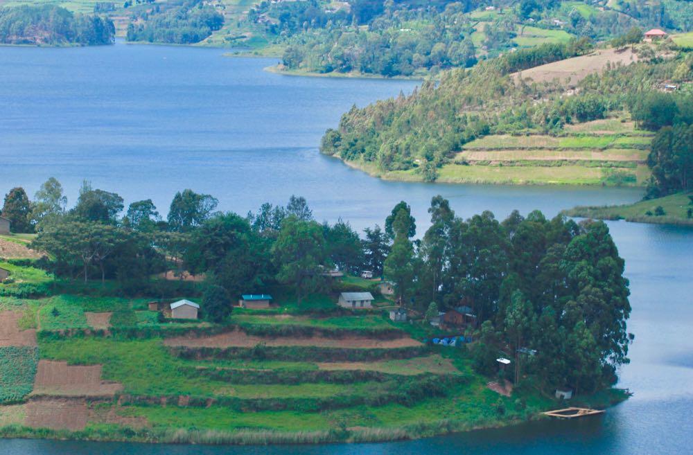 Edirisa on the Bufuka peninsula, Izy's base camp; photo by Enock Luyonza